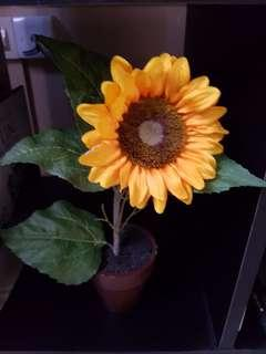 Sunflower Artificial