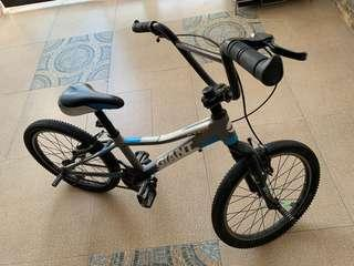 BMX Conversion Giant