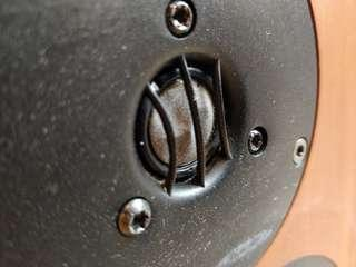 Linn Tukan speakers, free, *need repairs*