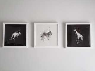 3 x Animal print in frame (set)