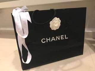 Chanel Paper Bag (Medium)