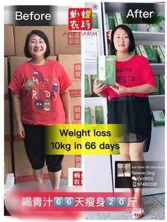 Barley Grass Green Juice - Weight Management