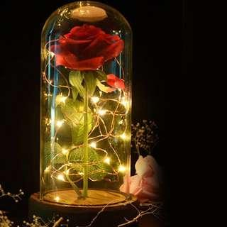 Beauty and the Beast Enchanted Rose LED Glass Night Lamp