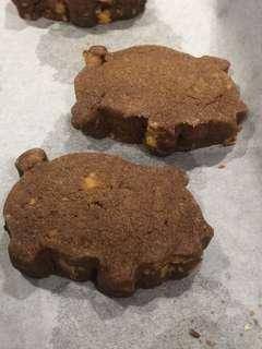Cocoa Pistachio Cookies