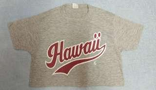 Vtg hawaii polytees for women