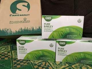 Sante barley