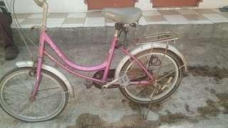 Sepeda kerenjang anak