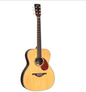 Guitar - FG30E Deluxe Solid Top Acoustic Guitar-High Gloss Finish