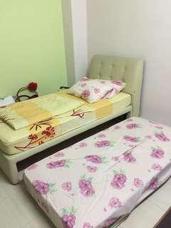 Single bed frame (1 mattress included)
