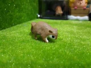 🚚 可愛ㄉ小飛鼠 扭蛋