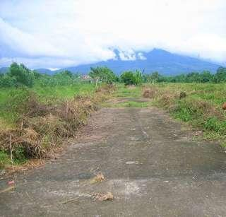 Selling land and subdivision in Candelaria, Quezon
