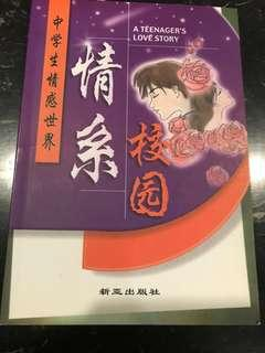 A Teenager's Love Story (in Chinese)