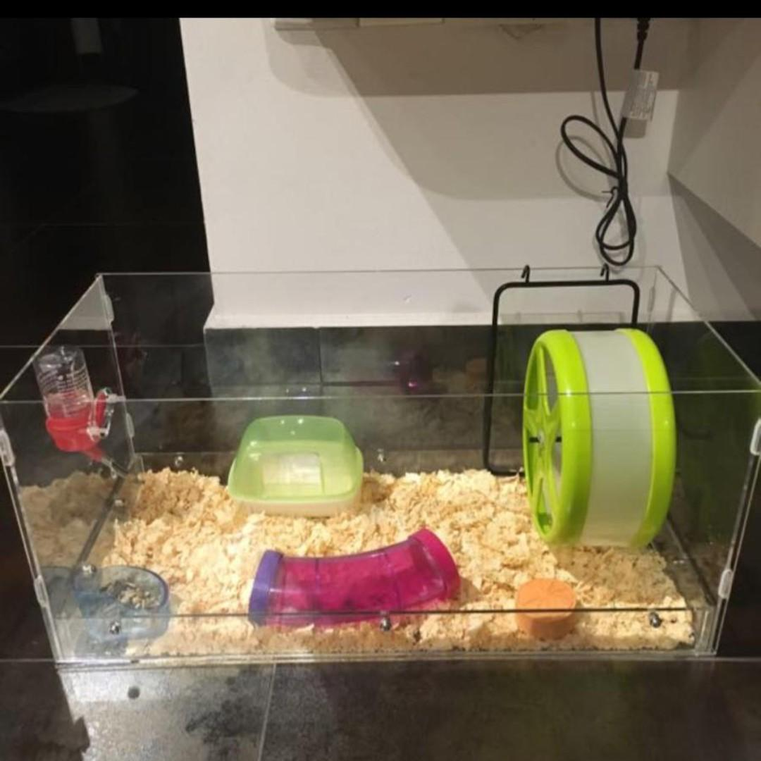 Acrylic Guinea Pig Hamster Tank Cage