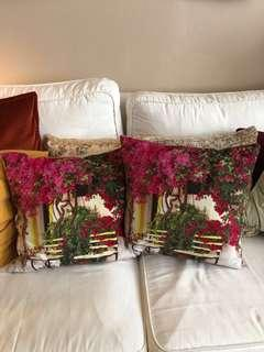 2 beautiful velvety cushions