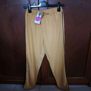 Colorbox Yellow Tailored Line Pants