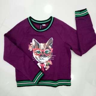 BN H&M Cat Sweater