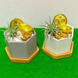 CNY Plant Terrarium Decor Double Fortune Gold Ingot 六六大顺
