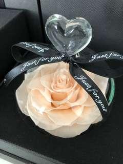 🚚  Valentine's Specials - Premium Preserved Ecuadorian Roses