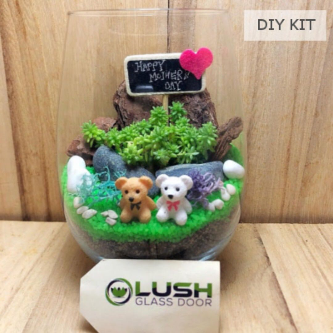 Mother S Day Succulent Terrarium Diy Kit Gardening On Carousell