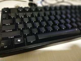 filco majestouch full size keyboard. ( blue switch)