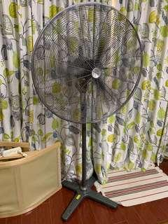 Dynabreeze commercial floor standing fan 800mm