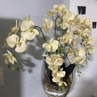 Artificial phalaenopsis Moth Orchids with Glassware