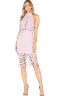 BARDOT Lilac Gemma Lace ladder dress 8