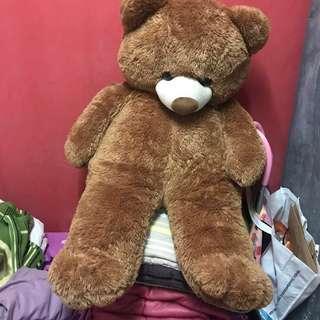 BIG cute teddy bear
