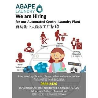 Laundry Attendant (Full time/Part time)