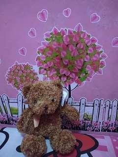 boneka teddy bear gift kado