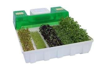 Easy Green GL50 Micro Green automatic  Spouter