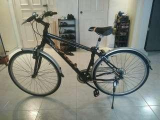 Like New Viva Mountain Bike + lock and chain