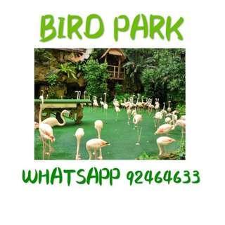 Bird Park Bird Park Bird Park Bird Park Bird Park Bird Park Bird Park Bird Park Bird Park Bird Park