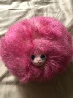 Harry Potter studio London Pygmy Puff