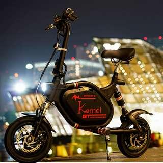 AM-GT (Better than AM Tempo, AM-GTR) 12 Inch Escooter Electric Scooter E-scooter