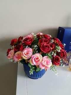 Carnations and Rose