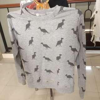 Sweater dinosaurus