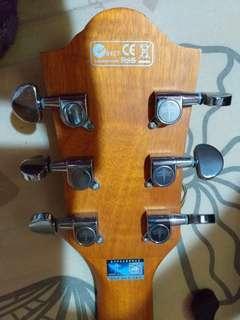 SamPaul acoustic guitar