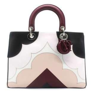 (RARE) Christian Dior Lady Dior Large Handbag (Multicolor)