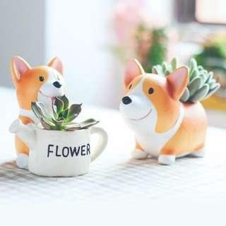 Adorable Corgi Succulent Pots