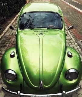 福斯 VW 1971 Beetle 金龜車