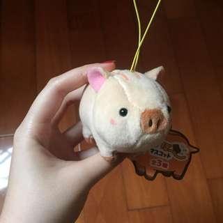 超可愛小豬🐷