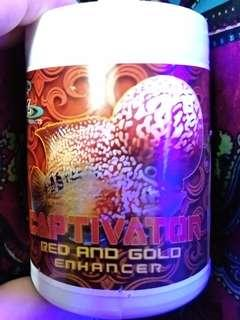 Captivator Red & Gold Enhancer (louhan pellet).