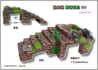 🚚 (水族)烏龜爬梯