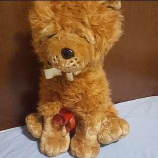 Teddy Bear huge 55cm height
