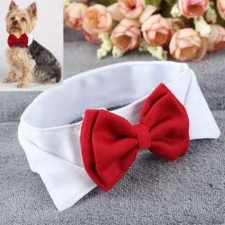 Instock Pet Bow Tie Collar Necktie Dog Cat Puppy Small Large Red Black Yellow