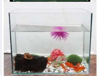 Eco-water grass heat bending fish tank aquarium ordinary small fish tank-intal