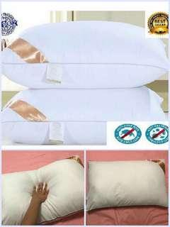 BUY 1 free 1 - Hotel Pillow