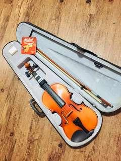 Violin with extra strings