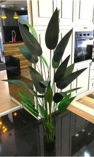 Artificial plants got ready stocks